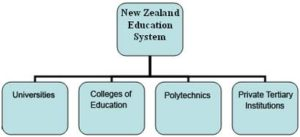 job oriented courses in new zealand