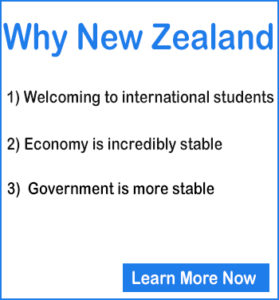 post graduate diploma courses in new zealand