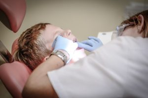 study dentistry in usa